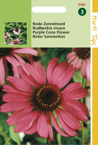 5443 HT Rudbeckia vivace  0,5 gramme