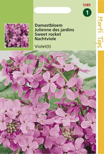 5385 HT Damastbloem Violet 1 gram