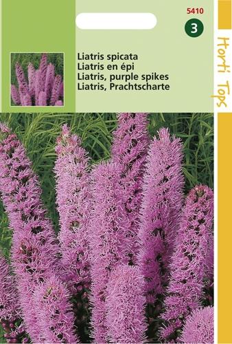 5410 HT Liatris spicata  0,75 gram