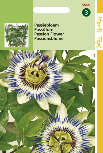 5555 HT Passiflora  0,33 gramme