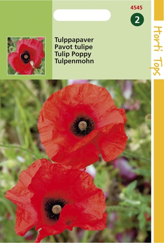 4545 HT Pavot tulipe 0,5 gramme
