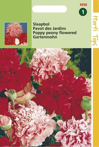 4550 HT Pavot des Jardins  1 gramme