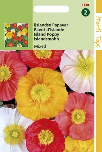 5130 HT Pavot d'Islande Mixed  0,3 gramme