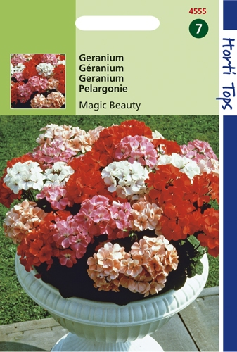 4555 HT Geranium Magic Beauty F1    10 zaden