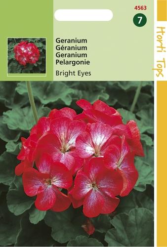 4563 HT Geranium Bright Eyes F1 hybride 10 zaden