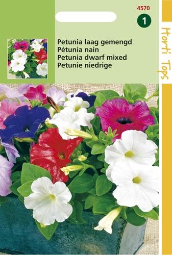 4570 HT Petunia laag gemengd 0,2 gram