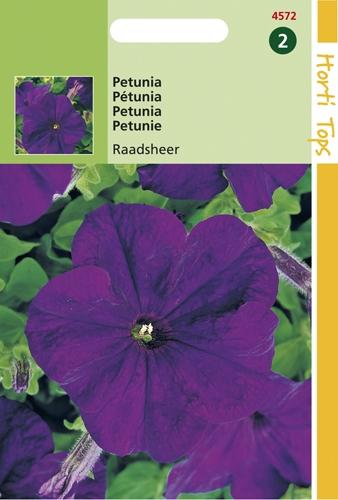 4572 HT Petunia Raadsheer 0,2 gram