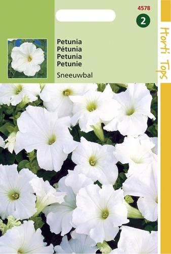 4578 HT Pétunia Boule de neige  0,2 gramme