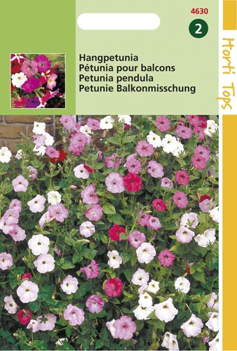 4630 HT Pétunia pour balcons  0,2 gramme