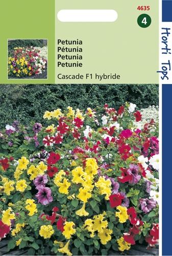 4635 HT Pétunia Cascade F1 hybride en mélange  70 graines