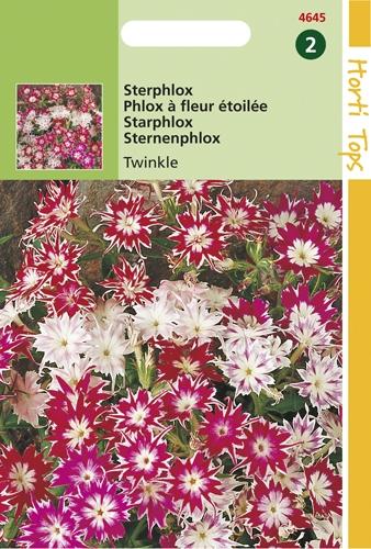 4645 HT Sterphlox Twinkle 0,5 gram