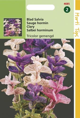 4685 HT Blad Salvia Tricolor gemengd 0,5 gram