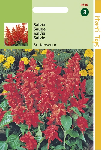 4690 HT Salvia St. Jansvuur 0,4 gram