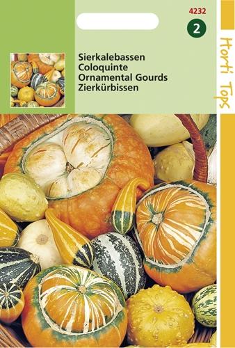 4243 HT Coloquinte à petits et gros fruits  2 grammes