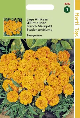 4782 HT Lage Afrikaan Tangerine 1 gram