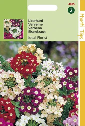 4835 HT IJzerhard Ideal Florist 0,5 gram