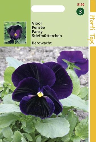 5170 HT Viool Berna 0,4 gram