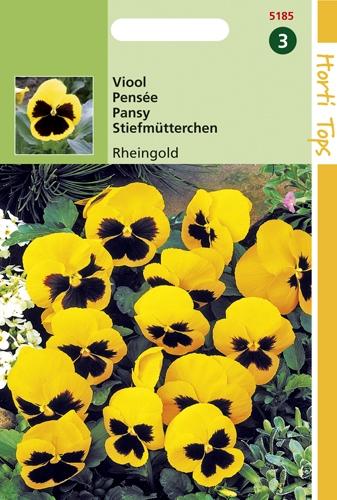 5185 HT Pensée Rheingold  0,4 gramme