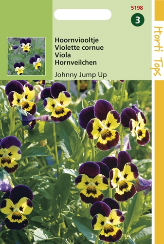 5198 HT Viool Johnny Jump Up 0,3 gram