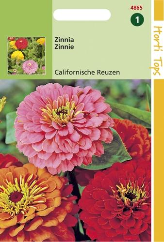 4865 HT Zinnia Calafornische Reuzen gemengd 1,5 gram