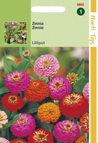 4868 HT Zinnia Lilliput  1,5 gramme