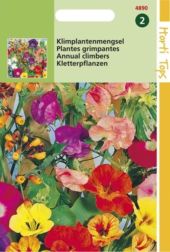4890 HT Plantes grimpantes  4 gramme