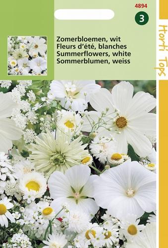 4894 HT Fleurs d'été blanches  2 gramme