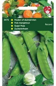 3472 Peulen Record  100 gram