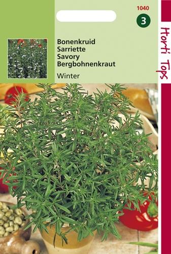 1040 HT Sarriette vivace  0,4 gramme