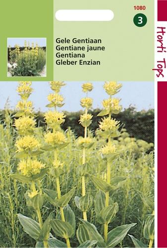 1080 HT Gentiane jaune  0,25 gramme
