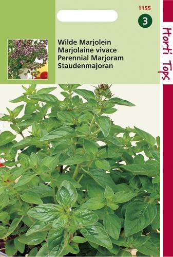 1155 HT Marjolaine vivace  0,25 gramme