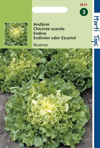 Les légumes-feuilles
