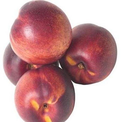 Nectariniers